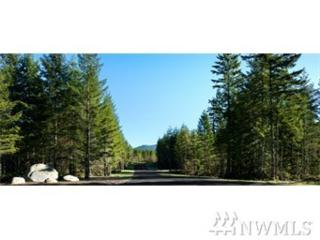88888 318th Wy SE, Ravensdale, WA 98051 (#1095261) :: Ben Kinney Real Estate Team