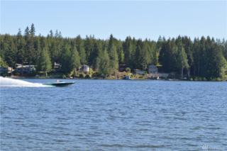 1720 E Mason Lake Dr W, Grapeview, WA 98546 (#1095383) :: Ben Kinney Real Estate Team
