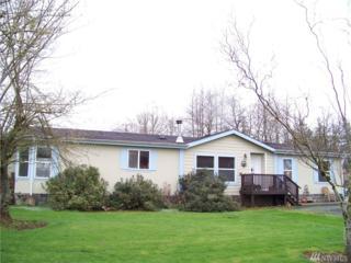258-A Coleman Rd, Mossyrock, WA 98564 (#1095399) :: Ben Kinney Real Estate Team