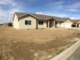 366 Dandero St SE, Moses Lake, WA 98837 (#1095418) :: Ben Kinney Real Estate Team