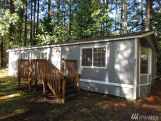 491 Flair Valley Dr, Maple Falls, WA 98266 (#1095516) :: Ben Kinney Real Estate Team