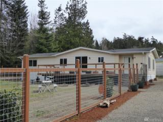 41 Pine Dr, Port Townsend, WA 98368 (#1095520) :: Ben Kinney Real Estate Team
