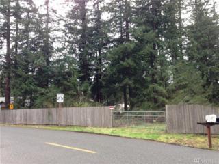 9611 192nd Ave E, Bonney Lake, WA 98391 (#1095521) :: Ben Kinney Real Estate Team
