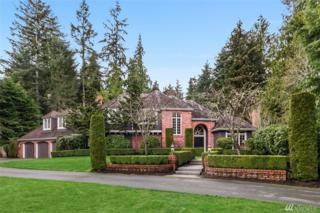 10125 219th Place NE, Redmond, WA 98053 (#1095668) :: Real Estate Solutions Group