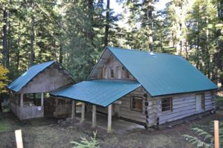 115 Silver Springs Usfs, Greenwater, WA 98022 (#1095873) :: Ben Kinney Real Estate Team
