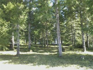 630 E Soderberg Rd, Allyn, WA 98524 (#1095880) :: Ben Kinney Real Estate Team
