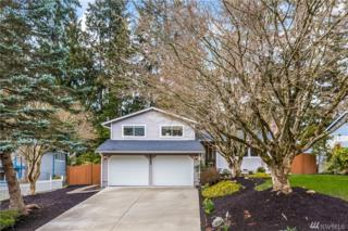 17616 26th Dr SE, Bothell, WA 98012 (#1095887) :: The DiBello Real Estate Group