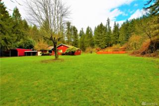 5510 396th Dr SE, Snoqualmie, WA 98065 (#1095948) :: Homes on the Sound