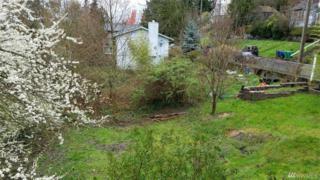 0-XXXX 23rd Ave SW, Seattle, WA 98106 (#1096023) :: Ben Kinney Real Estate Team