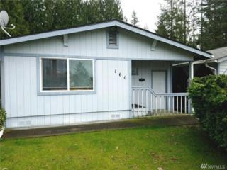 160 Steelhead Dr, Mossyrock, WA 98564 (#1096044) :: Ben Kinney Real Estate Team