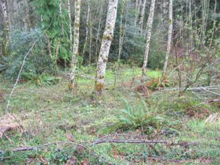 0-Lot 4 Greenwood Rd, Cathlamet, WA 98612 (#1096048) :: Ben Kinney Real Estate Team