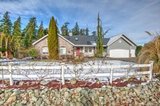 980 Marshall Dr, Camano Island, WA 98282 (#1096141) :: Ben Kinney Real Estate Team