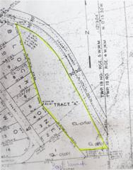 1-+ac Lost Lake Rd, Shelton, WA 98584 (#1096199) :: Ben Kinney Real Estate Team