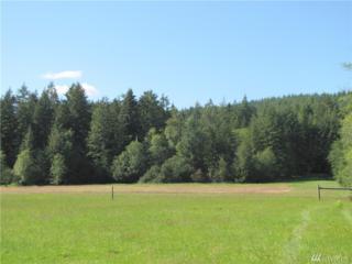 3503 Sr 508, Onalaska, WA 98570 (#1096303) :: Ben Kinney Real Estate Team