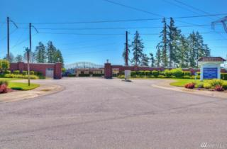 17719 16th St Ct E, Lake Tapps, WA 98391 (#1096433) :: Ben Kinney Real Estate Team