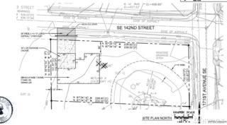 14205 171st Ave SE, Renton, WA 98059 (#1096447) :: The DiBello Real Estate Group