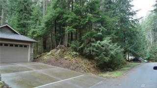 8 Little Palomino Ct, Bellingham, WA 98229 (#1096511) :: Ben Kinney Real Estate Team