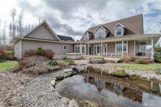 1334 E Axton Rd, Bellingham, WA 98226 (#1096627) :: Ben Kinney Real Estate Team