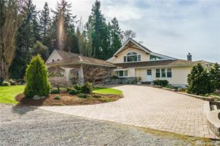 19381 County Line Rd, Stanwood, WA 98292 (#1096666) :: Ben Kinney Real Estate Team