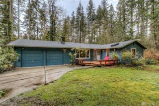 26032 SE 156 St, Issaquah, WA 98027 (#1096898) :: Ben Kinney Real Estate Team