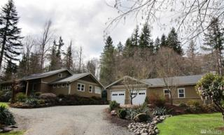 21041 236th Ave SE, Maple Valley, WA 98038 (#1097071) :: Homes on the Sound
