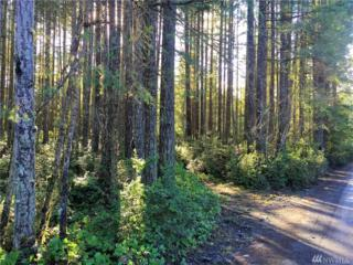 2625 Lot A Four Wheel Dr, Seabeck, WA 98380 (#1097520) :: Better Homes and Gardens Real Estate McKenzie Group