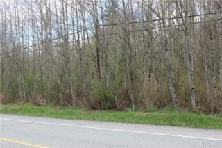 0 Old Highway 99 North Rd, Burlington, WA 98233 (#1097905) :: Ben Kinney Real Estate Team