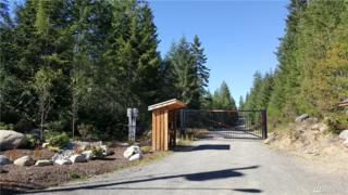 0 Lot 19 Dewatto Rd W, Seabeck, WA 98312 (#1099547) :: Better Homes and Gardens Real Estate McKenzie Group