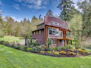 3169 Point White Dr NE, Bainbridge Island, WA 98110 (#1100739) :: Better Homes and Gardens Real Estate McKenzie Group