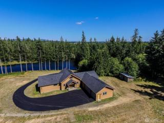 23540 W Ludvick Lake Dr, Seabeck, WA 98380 (#1104287) :: Better Homes and Gardens Real Estate McKenzie Group