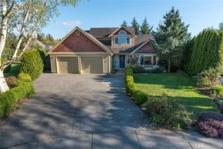 1700 Bridgeview Ct, Lynden, WA 98264 (#1105307) :: Ben Kinney Real Estate Team