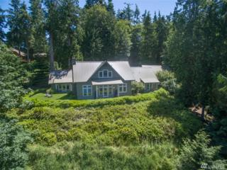 1331 E Ludlow Ridge Rd, Port Ludlow, WA 98365 (#1105775) :: Better Homes and Gardens Real Estate McKenzie Group