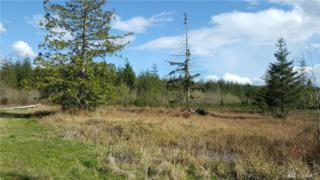 1 Dancing Deer Dr Ct, Seabeck, WA 98380 (#1106554) :: Better Homes and Gardens Real Estate McKenzie Group