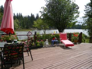31 E Trails End Place, Belfair, WA 98528 (#1108057) :: Better Homes and Gardens Real Estate McKenzie Group