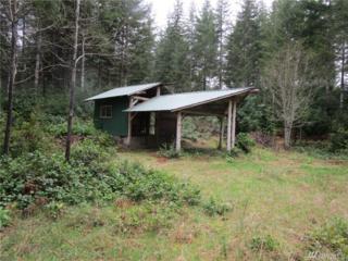461 NE Erickson Dr, Belfair, WA 98528 (#1108470) :: Better Homes and Gardens Real Estate McKenzie Group