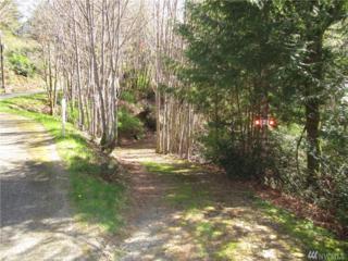 61 E Woods, Belfair, WA 98528 (#1110167) :: Better Homes and Gardens Real Estate McKenzie Group
