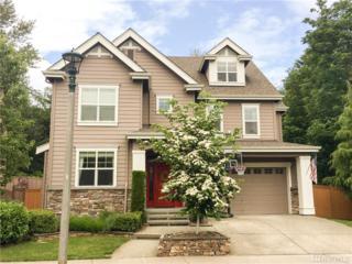 34630 SE Leitz St, Snoqualmie, WA 98065 (#1113192) :: The DiBello Real Estate Group
