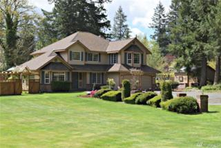 4402 256th Ave SE, Issaquah, WA 98029 (#1114319) :: Ben Kinney Real Estate Team
