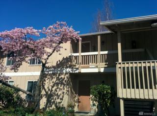 5029 84th St SW #111, Mukilteo, WA 98275 (#1114994) :: Ben Kinney Real Estate Team