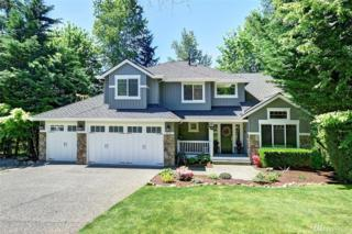 4025 251st Wy NE, Redmond, WA 98053 (#1124086) :: Real Estate Solutions Group
