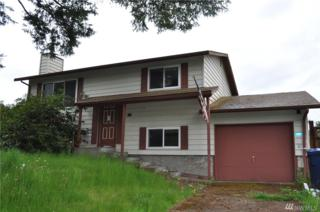 225 Paradise Pkwy, Granite Falls, WA 98252 (#1125159) :: The Key Team