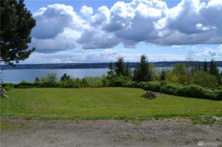 999 Lot #16  Dickey St, Port Ludlow, WA 98365 (#1125648) :: Better Homes and Gardens Real Estate McKenzie Group