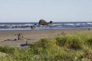 27 Copalis Rock Lane S, Copalis Beach, WA 98535 (#1126748) :: Keller Williams Realty Greater Seattle