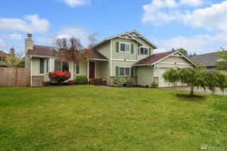 5230 107th St SW, Mukilteo, WA 98275 (#1128315) :: Real Estate Solutions Group