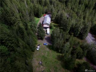 7421 NE Elfendahl Pass Rd, Belfair, WA 98528 (#1128377) :: Better Homes and Gardens Real Estate McKenzie Group