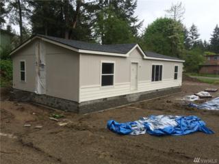 160 SE Saber Dr, Belfair, WA 98528 (#1128411) :: Better Homes and Gardens Real Estate McKenzie Group