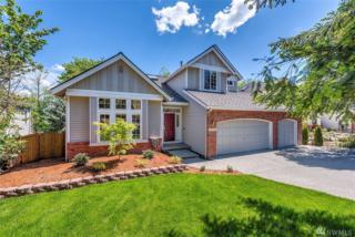 10828 180th Ct NE, Redmond, WA 98052 (#1128477) :: Real Estate Solutions Group