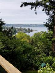 1310 Sunset Place NE, Tacoma, WA 98422 (#1128686) :: Homes on the Sound
