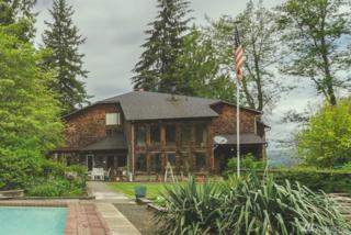 106 Mattson Rd, Oakville, WA 98568 (#1129481) :: Homes on the Sound