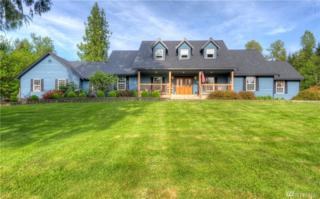 2515 233rd Ave SE, Snohomish, WA 98290 (#1129688) :: Real Estate Solutions Group